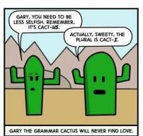 Gary the Grammar Cactus